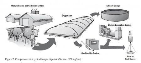 Biogas solution
